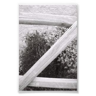 Fotografía Z2 4x6 blanco y negro de la letra del a