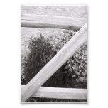 Fotografía Z2 4x6 blanco y negro de la letra del a Fotos