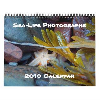 Fotografías de la vida marina, calendario 2010