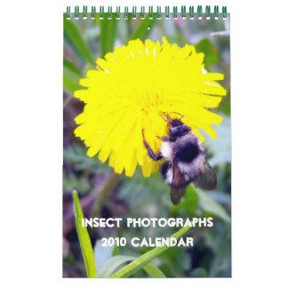 Fotografías del insecto, calendario 2010
