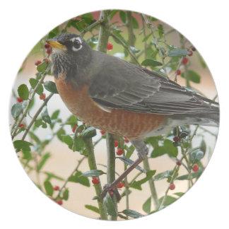 Fotografías: pájaros - platos