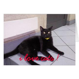 Fotografie0117, i love cats ! card