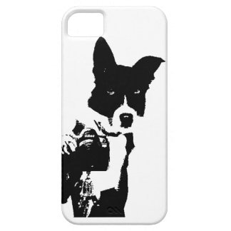 Fotógrafo canino iPhone 5 carcasas