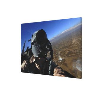 Fotógrafo del combate aéreo de la fuerza aérea de impresión en lienzo estirada