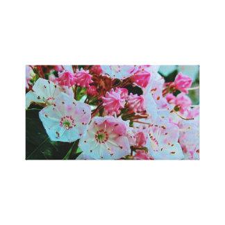 Fotón rosado de los laureles de montaña en lona impresiones en lona