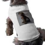 fotos comunes 087Wolf Camisa De Mascota