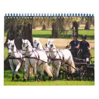 fotos del cde 2010 del roble vivo calendario