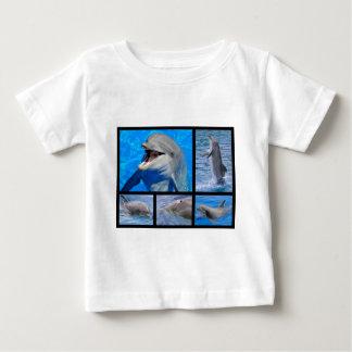 Fotos del mosaico de delfínes playera