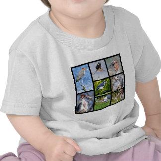 Fotos del mosaico de marabúes camiseta
