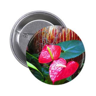 Fotos florales de la flor de los jardines de pin redondo 5 cm