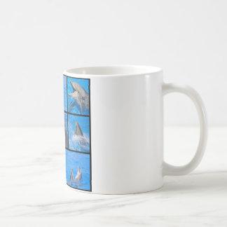 Fotos múltiples de delfínes taza de café