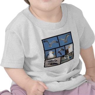 Fotos múltiples de gaviotas camiseta