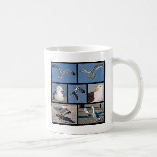 Fotos múltiples de gaviotas taza de café
