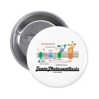 Fotosíntesis del equipo (reacciones dependientes d pin redondo 5 cm