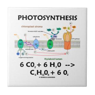 Fotosíntesis (fórmula química) azulejo