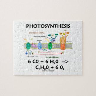 Fotosíntesis (fórmula química dependiente de la lu rompecabezas