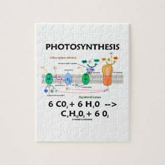 Fotosíntesis (fórmula química) puzzle con fotos