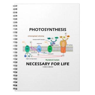 Fotosíntesis necesaria para la vida dependiente de libretas