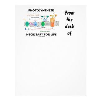 Fotosíntesis necesaria para la vida dependiente de membretes personalizados