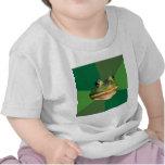 Foul Bachelor Frog Advice Animal Meme Tshirts