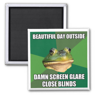 Foul Bachelor Frog Beautiful Day Magnet
