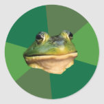 Foul Bachelor Frog Classic Round Sticker
