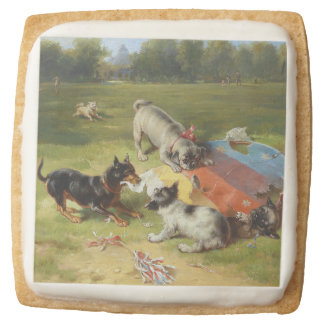 Found a Toy by Frank Paton Square Shortbread Cookie