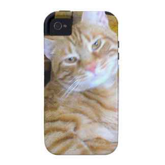 Found Feline Tabby Cat Happy Healthy Spoiled Vibe iPhone 4 Cases