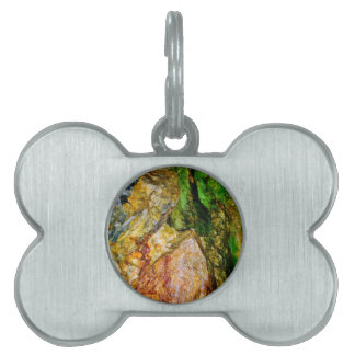 Foundations collection pet ID tag