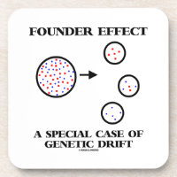 Founder Effect A Special Case Of Genetic Drift Drink Coaster