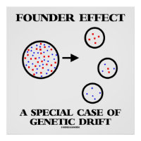 Founder Effect A Special Case Of Genetic Drift Poster
