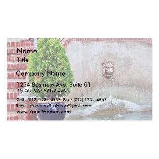 Fountain At Balboa Park Business Card Templates