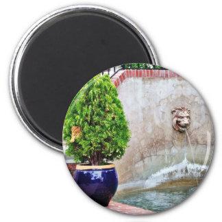 Fountain At Balboa Park Refrigerator Magnets