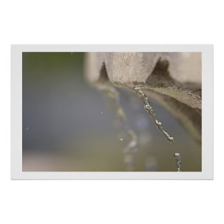Fountain drip poster