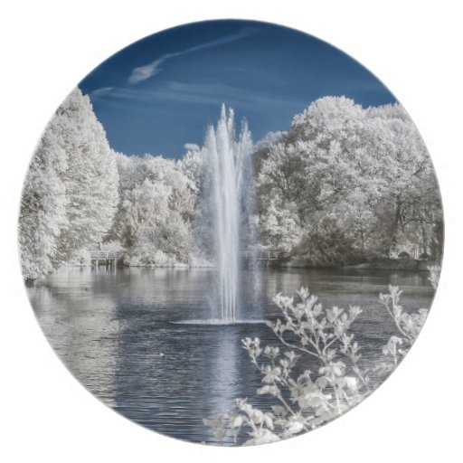 Fountain in Infrared Party Plates