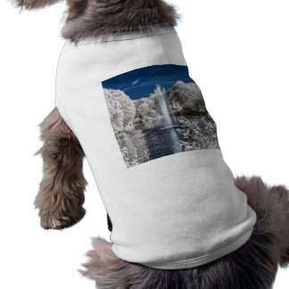 Fountain in Infrared T-Shirt