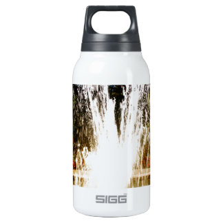 Fountain Insulated Water Bottle