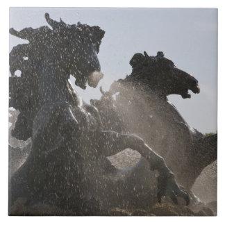 Fountain, Monument des Girondins, Bordeaux, Tile