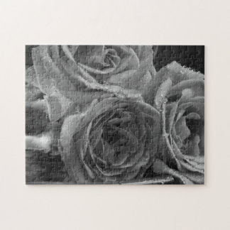 Fountain of Roses Puzzles
