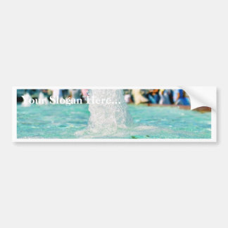 Fountains Pools Car Bumper Sticker