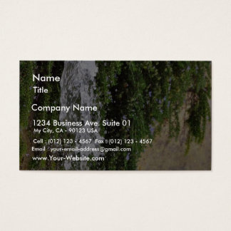 Fountains Water Spout Business Card