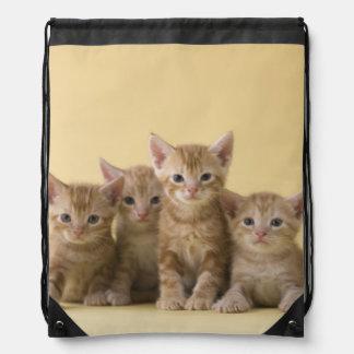 Four American Shorthair Kittens Drawstring Bag