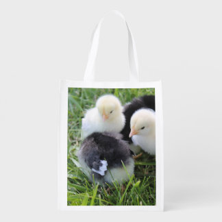 Four Black and Yellow Baby Chicken chicks Market Totes