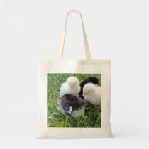 Four Black and Yellow Baby Chicken chicks Tote Bag