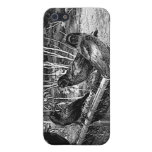 Four Black Crows Sitting on Fence Cover For iPhone 5/5S