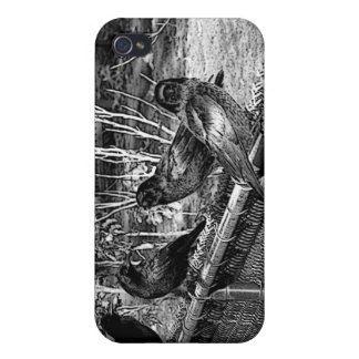 Four Black Crows Sitting on Fence iPhone 4 Cover