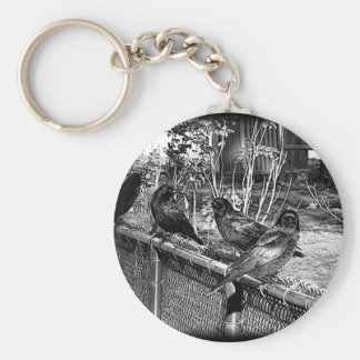 Four Black Crows Sitting on Fence Key Chains