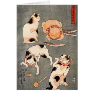 Four Cats Playing Together Card