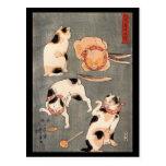 Four Cats Playing Together Postcard