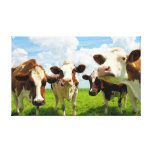 Four chatting cows canvas print